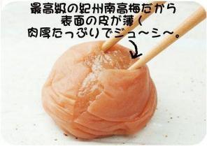 梅拡大.jpg